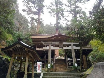 Kurama 3