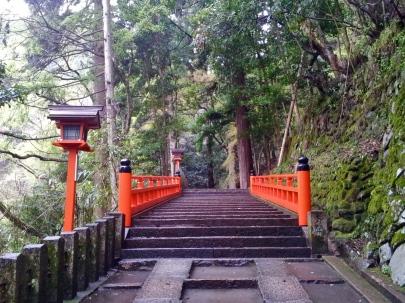 Kurama 7