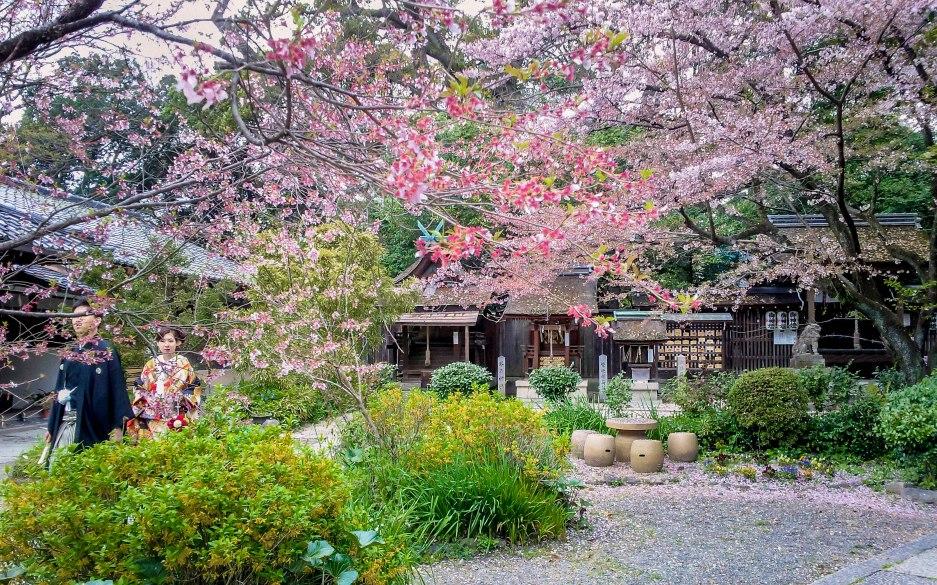2012-04-16-12-14-431